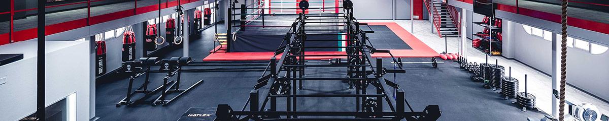 Box CrossFit 1505 a Reggio Emilia
